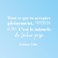 Sticker animaux marins baleine poisson méduse